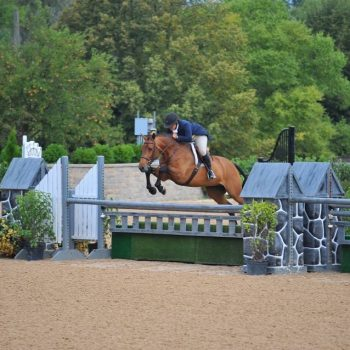 talking with the Plaid Horse magazine about being an amateur equestrian